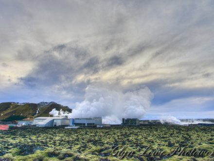 Iceland ERP system Recycling
